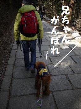 20120105_012.jpg